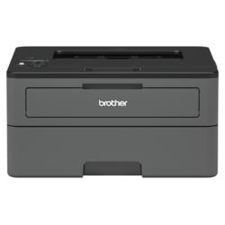 BROTHER HL-L2372DN + Flash disk 32GB